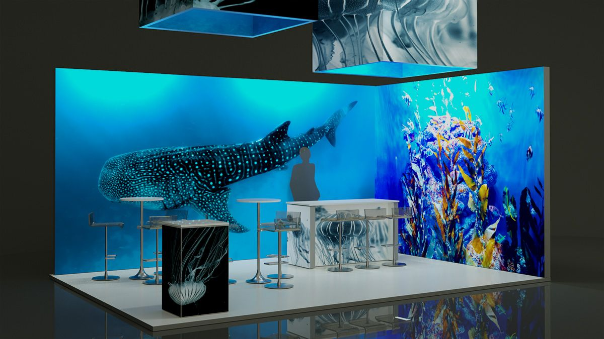 stand ballena apagado luz3 - Lightbox Stands