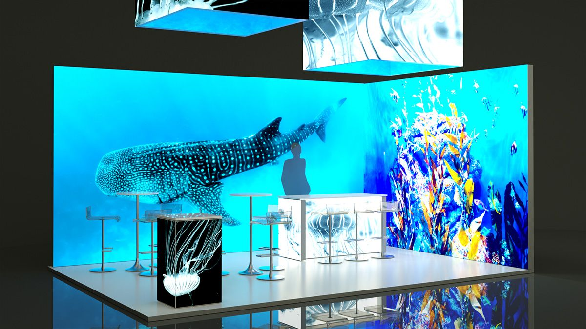 stand ballena encendido - Lightbox Stands